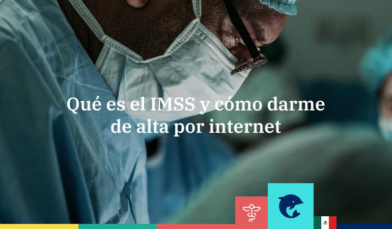 ¿Qué es el IMSS y cómo darme de alta por Internet?